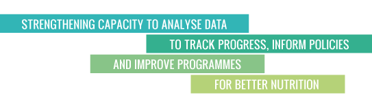 Strengthening capacity to analyse data to track progress,   inform policies and improve programmes for better nutrition